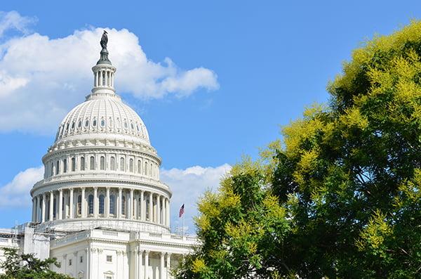 bigstock US Capitol Building in a cloud 33780200